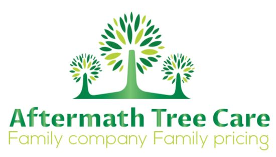 Aftermath Tree Care